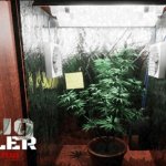 ocean of games - Drug Dealer Simulator Game Download For PC!